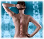 Total Wellness and Chiropractic Center